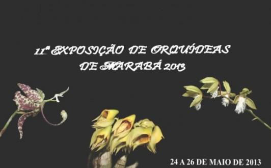 Expo Orquidea