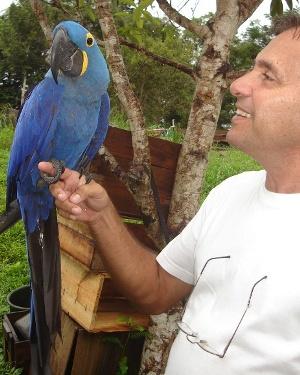 Jorge Arara 2