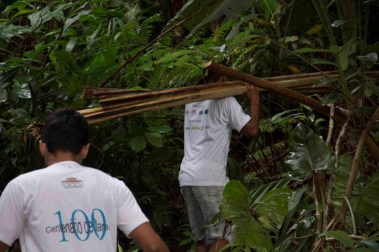 Vogueiros Gabriel e Pablo buscando talos de buriti, em Jatobal.